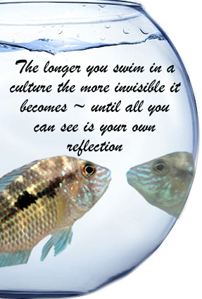 The longer you swim in a culture the more invisible it becomes ~ until all you can see if your own reflection