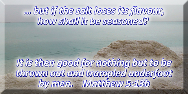 … but if the salt looses its flavour, how shall it be seasoned?  It is then good for nothing but to be thrown out and trampled underfoot by men.  Matthew 5:13b
